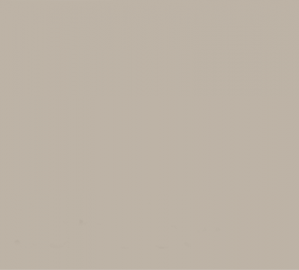Sandbar Color Sample